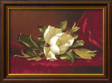 The Magnolia Flower Print by Martin Johnson Heade