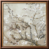 Almendro con flores, San Remy (Almond Branches in Bloom, San Remy, ca. 1890 (ocre)) Lmina por Vincent van Gogh