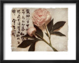 Oriental Peony Print by Julie Nightingale