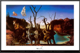 Swans Reflecting Elephants, c.1937 Posters by Salvador Dalí