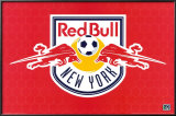Red Bull New York Photo