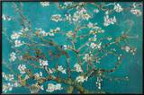 Almond Blossom Print by Vincent van Gogh