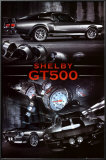 Ford Shelby GT500 Photo