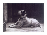 Waiting For Master Premium Giclee Print by Herbert Dicksee