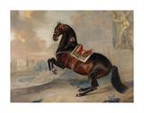 Valido Premium Giclee Print by Johann George Hamilton