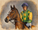 Kauto Star Limited Edition by Sarah Aspinall