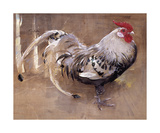 The Spangled Cock Premium Giclee Print by Joseph Crawhall