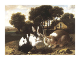 Two Rabbits In A Landscape Premium Giclee Print by  17th Century Haarlem School