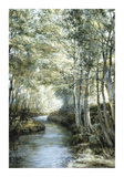 Silver Birches by a Stream Premium Giclee Print by Montague Dawson
