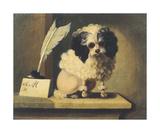 Poodle Premium Giclee Print by James De Lamond