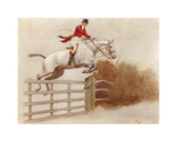 Timber Topper Premium Giclee Print by Cecil Aldin