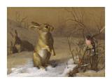 Rabbit and Bullfinch Reproduction giclée Premium par Archibald Thorburn
