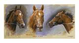 Nashwan and Swain Premium Giclee Print by Susan Crawford