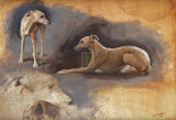 Whippets Premium Giclee Print by Susan Crawford