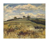 Withypool Landscape, Exmoor Premium Giclee Print by Sir Alfred Munnings