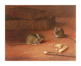 Hungry Mice Premium Giclee Print by Archibald Thorburn
