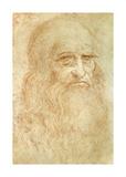 Self Portrait Premium Giclee Print by  Leonardo da Vinci