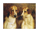 Foxhounds Premium Giclee Print by J Hanson Jr Walker
