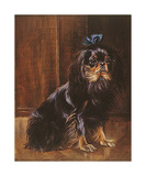 Tiny - A Black And Tan King Premium Giclee Print by Patricia Morrow