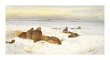 Partridges in a Winter Landscape Premium Giclee Print by Archibald Thorburn