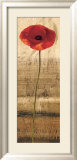 Poppy Panel II Prints by Andrea Kahn