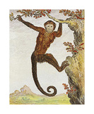 Monkey I Premium Giclee Print by Jacques de Seve