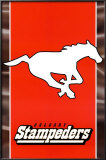 CFL - Calgary Stampeders Prints