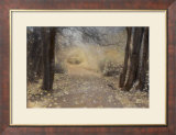 Silent Path Print by Barbara Kalhor