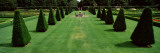 Trees in a Garden, Pitmedden Garden, Pitmedden, Aberdeenshire, Scotland Photographic Print by  Panoramic Images