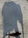 Mahout Walks Along the Shadow of the Elephant to Protect Himself from the Sun in Patna, India Photographic Print