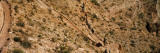 Mule Riders and Hikers on the Trail, South Kaibab Trail, Grand Canyon National Park, Arizona, USA Photographic Print by  Panoramic Images