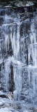 Icicles Formation on Rocks, Great Smoky Mountains National Park, North Carolina, USA Photographic Print by  Panoramic Images