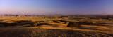 Tree on a Landscape, Sage Creek Basin, Badlands National Park, South Dakota, USA Photographic Print by  Panoramic Images