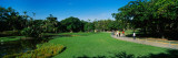 People in a Park, Caracas East Park, Caracas, Venezuela Photographic Print by  Panoramic Images