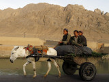 Afghan Kids Ride on a Horse Carriage in Kandahar City, Afghanistan Photographic Print