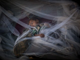Displaced Boy Sleeps under a Mosquito Net at the Jalozai Refugee Camp Near Peshawar, Pakistan Photographic Print