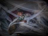 Displaced Boy Sleeps under a Mosquito Net at the Jalozai Refugee Camp Near Peshawar, Pakistan Photographic Print