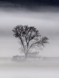 Fog Shrouds a Riverboat Docked on the Ohio River Photographic Print