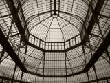 Palm House Following Restoration, the Botanic Gardens, Dublin, Ireland Reproduction photographique