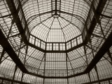 Palm House Following Restoration, the Botanic Gardens, Dublin, Ireland Fotografie-Druck