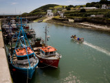 Fishing Boats, Helvick Port, Ring Gaelic Area, County Waterford, Ireland Photographic Print