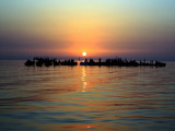 Fishermen Demonstrate Off the Coast of the Village of Malkiya, Bahrain, at Sunset Photographic Print