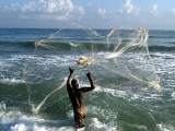 Sri Lankan Fisherman Casts His Net into the Sea at Cheddi Palayan, Sri Lanka Photographic Print