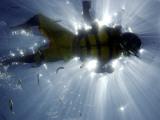 Snorkeler Swims at Balmorhea State Park, Texas Photographic Print