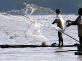 Fishermen Cast their Nets at Muttukadu in the Outskirts of Madras, India Photographic Print