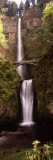 Waterfall in a Forest, Multnomah Falls, Columbia River Gorge, Oregon, USA Photographic Print by Panoramic Images 