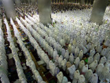 Indonesian Muslims Pray at Istiqlal Mosque in Jakarta for the Victims of Deadly Tsunami in Aceh Photographic Print