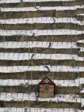 Snow Covered Vineyard is Seen in Stuttgart, Germany Lámina fotográfica
