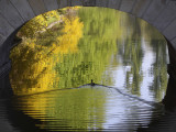 Duck Passes under a Bridge in Lazienki Park in Warsaw, Poland Photographic Print