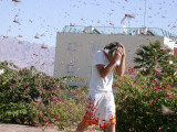 Israeli Youth Tries to Avoid Locusts as He Walks in a Street in the City of Eilat, in the Red Sea Photographic Print